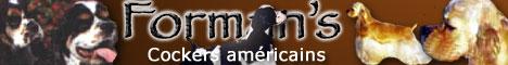 bannière siteForman's Kennel, élevage de cockers américains en France