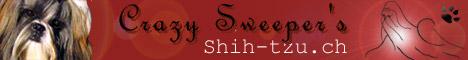 bannière Crazy Sweeper's, élevage de Shih-tzu
