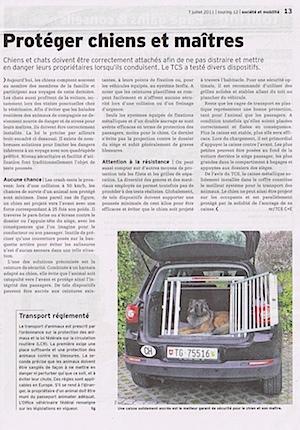 tcs_transport_chien