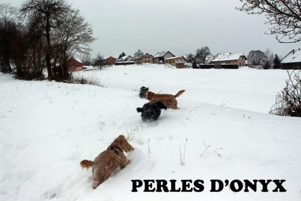neigebalade2