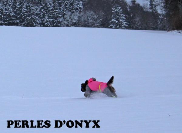 neigebalade3